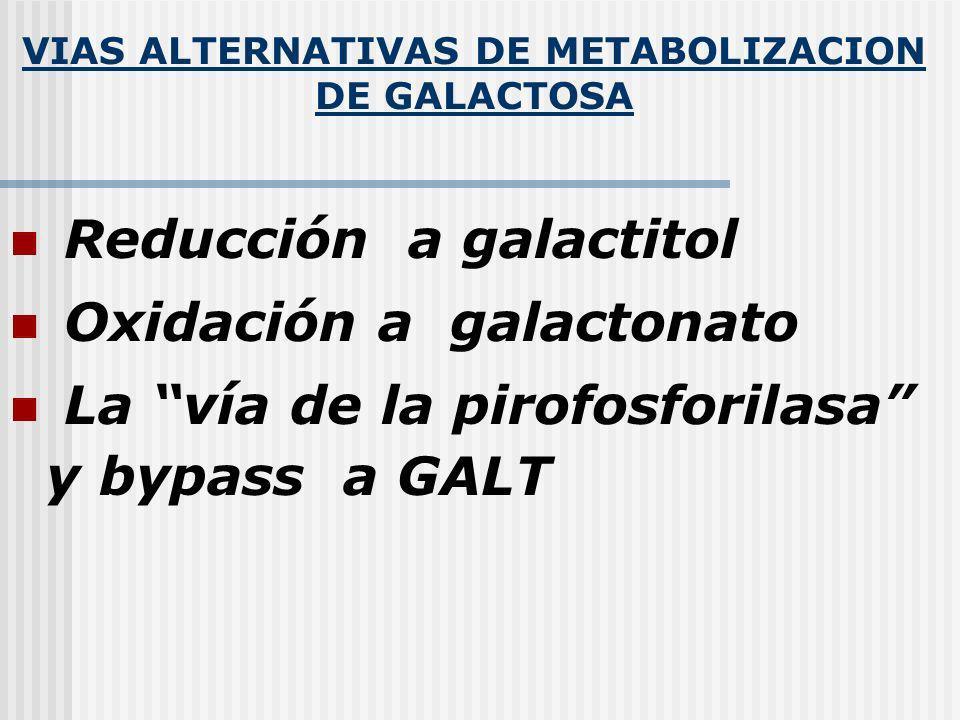 VIAS ALTERNATIVAS DE METABOLIZACION DE GALACTOSA Reducción a galactitol Oxidación a galactonato La vía de la pirofosforilasa y bypass a GALT