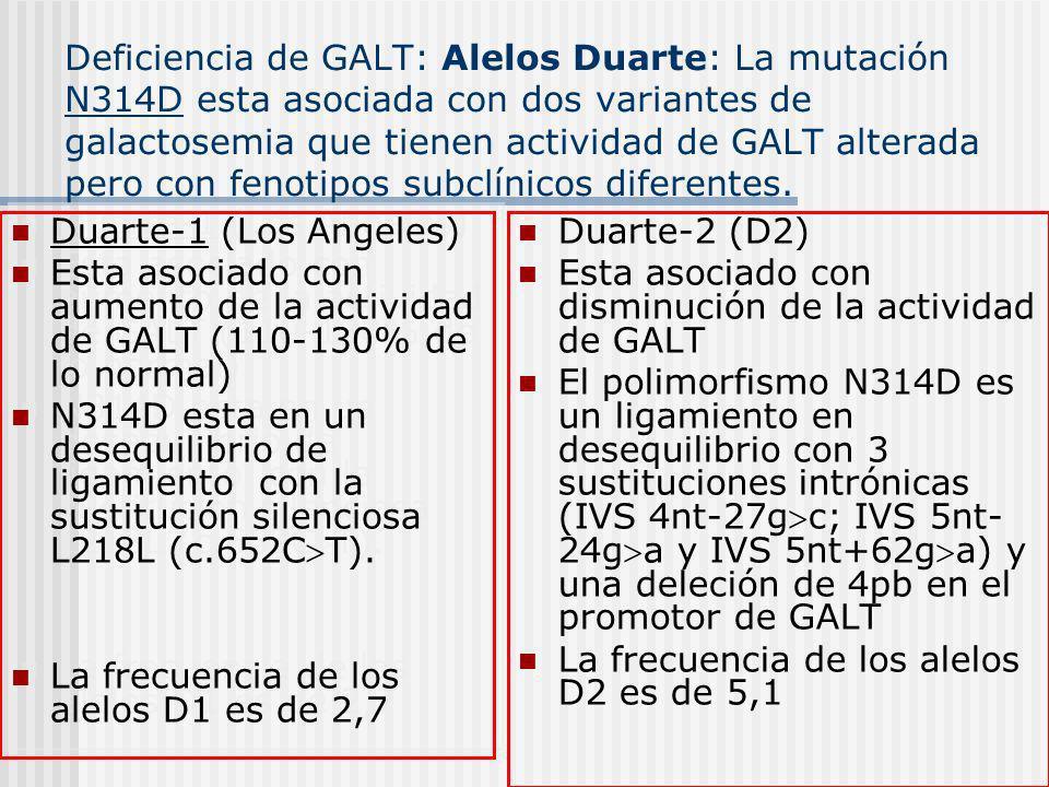Deficiencia de GALT: Alelos Duarte: La mutación N314D esta asociada con dos variantes de galactosemia que tienen actividad de GALT alterada pero con f