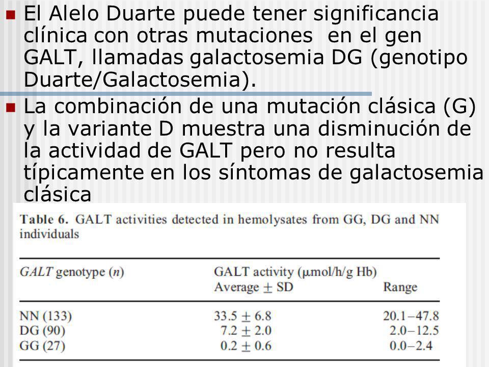 El Alelo Duarte puede tener significancia clínica con otras mutaciones en el gen GALT, llamadas galactosemia DG (genotipo Duarte/Galactosemia). La com