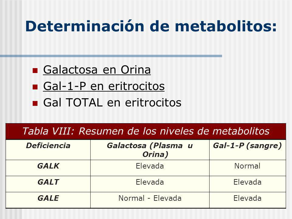 Determinación de metabolitos: Galactosa en Orina Gal-1-P en eritrocitos Gal TOTAL en eritrocitos Tabla VIII: Resumen de los niveles de metabolitos Def