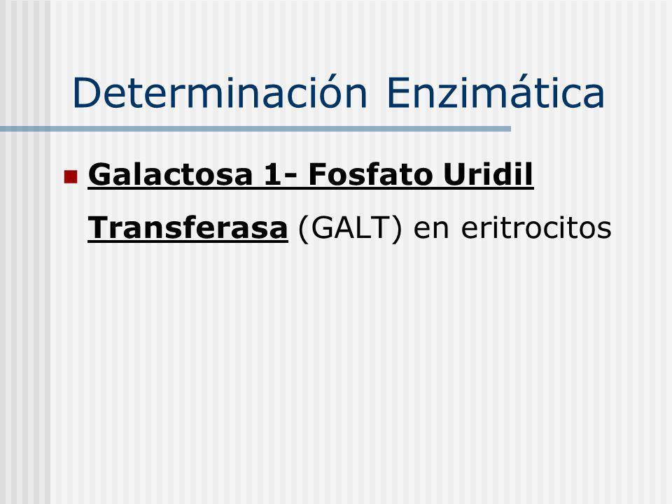 Determinación Enzimática Galactosa 1- Fosfato Uridil Transferasa (GALT) en eritrocitos