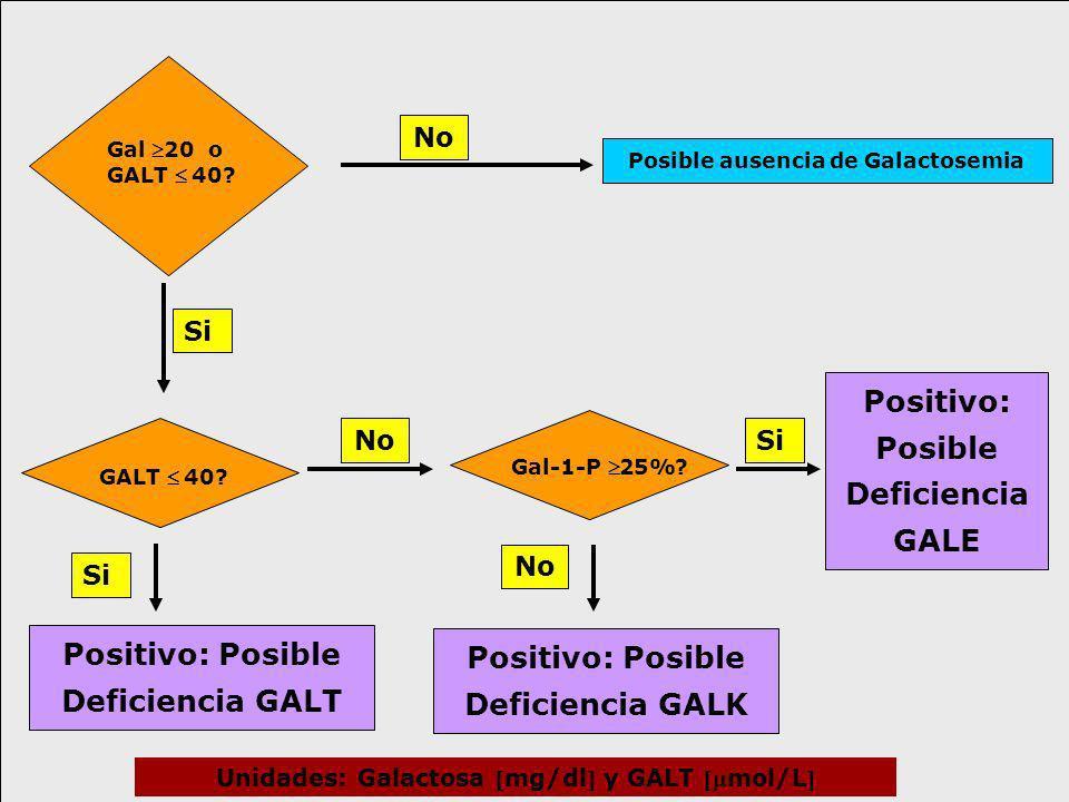 Gal 20 o GALT 40? GALT 40? Gal-1-P25%? Si No Positivo: Posible Deficiencia GALT Positivo: Posible Deficiencia GALK Positivo: Posible Deficiencia GALE