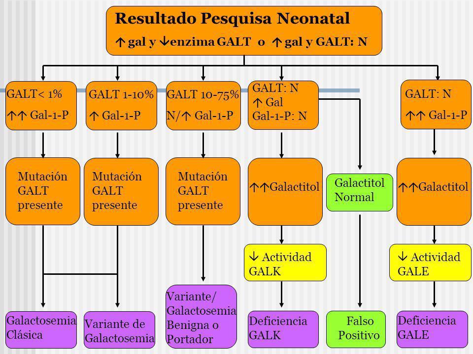 Resultado Pesquisa Neonatal gal y enzima GALT o gal y GALT: N GALT< 1% Gal-1-P GALT 1-10% Gal-1-P GALT 10-75% N/ Gal-1-P GALT: N Gal Gal-1-P: N Mutaci