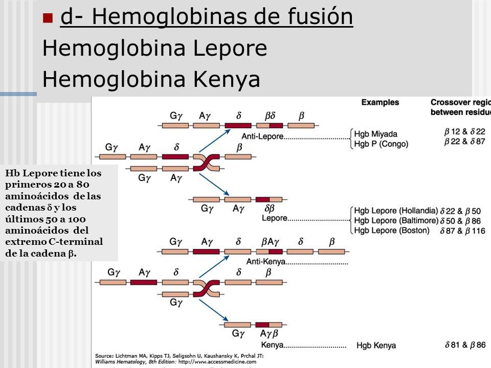 d- Hemoglobinas de fusión Hemoglobina Lepore Hemoglobina Kenya Hb Lepore tiene los primeros 20 a 80 aminoácidos de las cadenas y los últimos 50 a 100