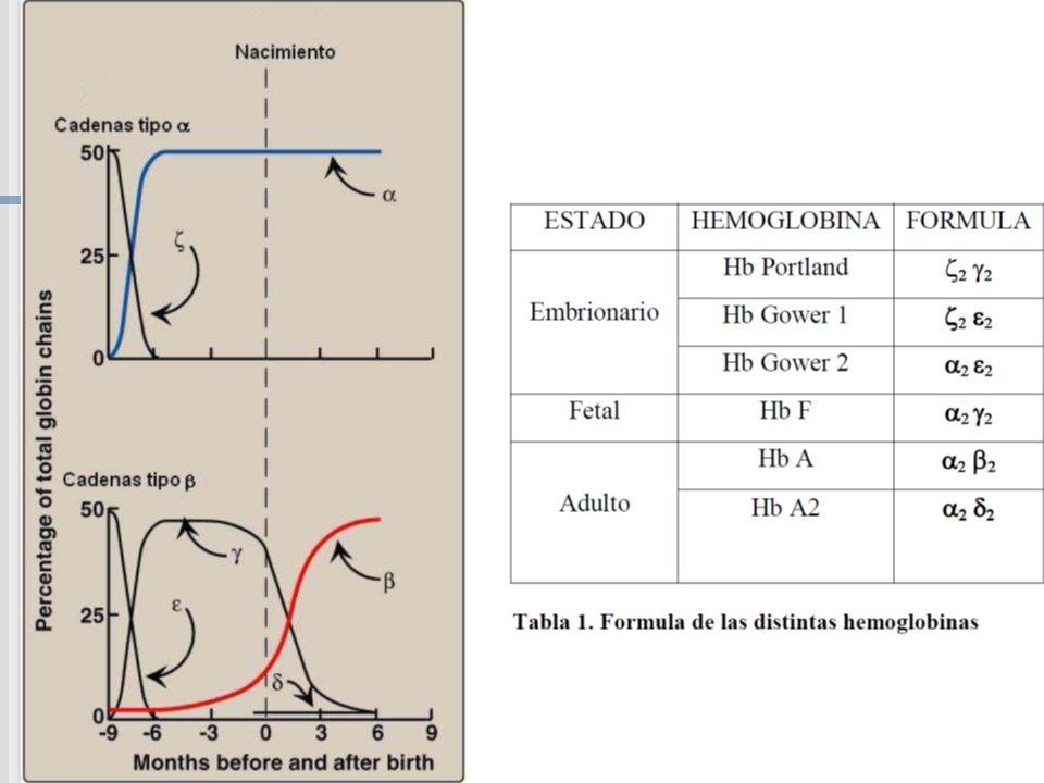 Desordenes de Hemoglobinas Inestables Anemia Hemolítica de Cuerpos de Heinz Congénitos, (CHBA) (Congenital Heinz body hemolitic anemia) Tipo 2: Ruptura Estructura Secundaria de -helice l Prolina no puede participar excepto como parte de uno de los tres residuos iniciales.
