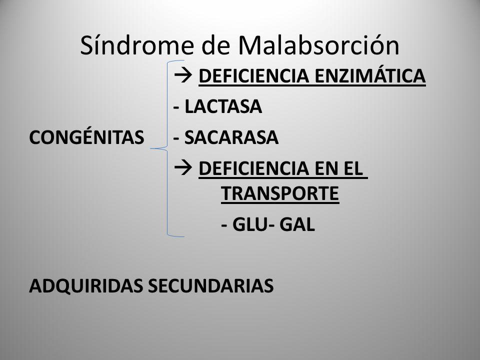 Síndrome de Malabsorción DEFICIENCIA ENZIMÁTICA - LACTASA CONGÉNITAS - SACARASA DEFICIENCIA EN EL TRANSPORTE - GLU- GAL ADQUIRIDAS SECUNDARIAS