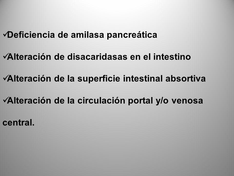 Deficiencia de amilasa pancreática Alteración de disacaridasas en el intestino Alteración de la superficie intestinal absortiva Alteración de la circu