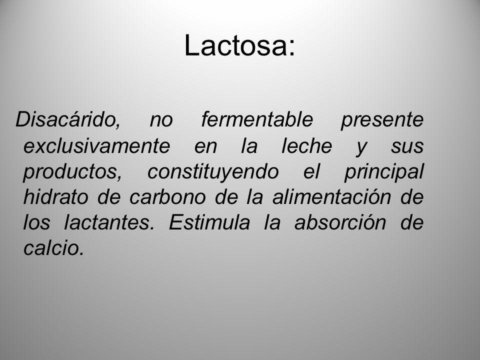 Lactosa: Disacárido, no fermentable presente exclusivamente en la leche y sus productos, constituyendo el principal hidrato de carbono de la alimentac