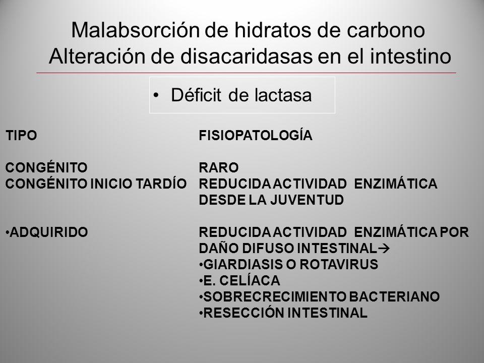 Malabsorción de hidratos de carbono Alteración de disacaridasas en el intestino Déficit de lactasa TIPOFISIOPATOLOGÍA CONGÉNITORARO CONGÉNITO INICIO T
