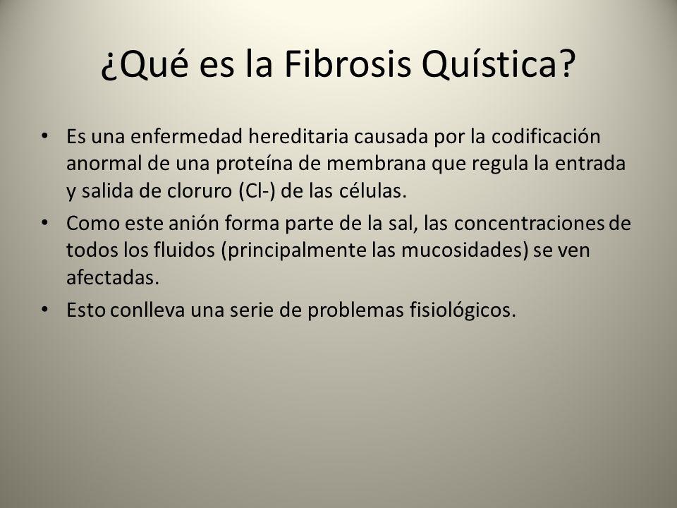 ¿Qué es la Fibrosis Quística? Es una enfermedad hereditaria causada por la codificación anormal de una proteína de membrana que regula la entrada y sa