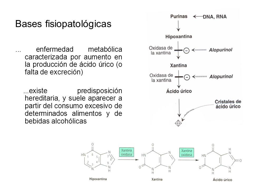 correccion acido urico de forma naturales tratamiento del acido urico con homeopatia licuados de frutas para bajar el acido urico