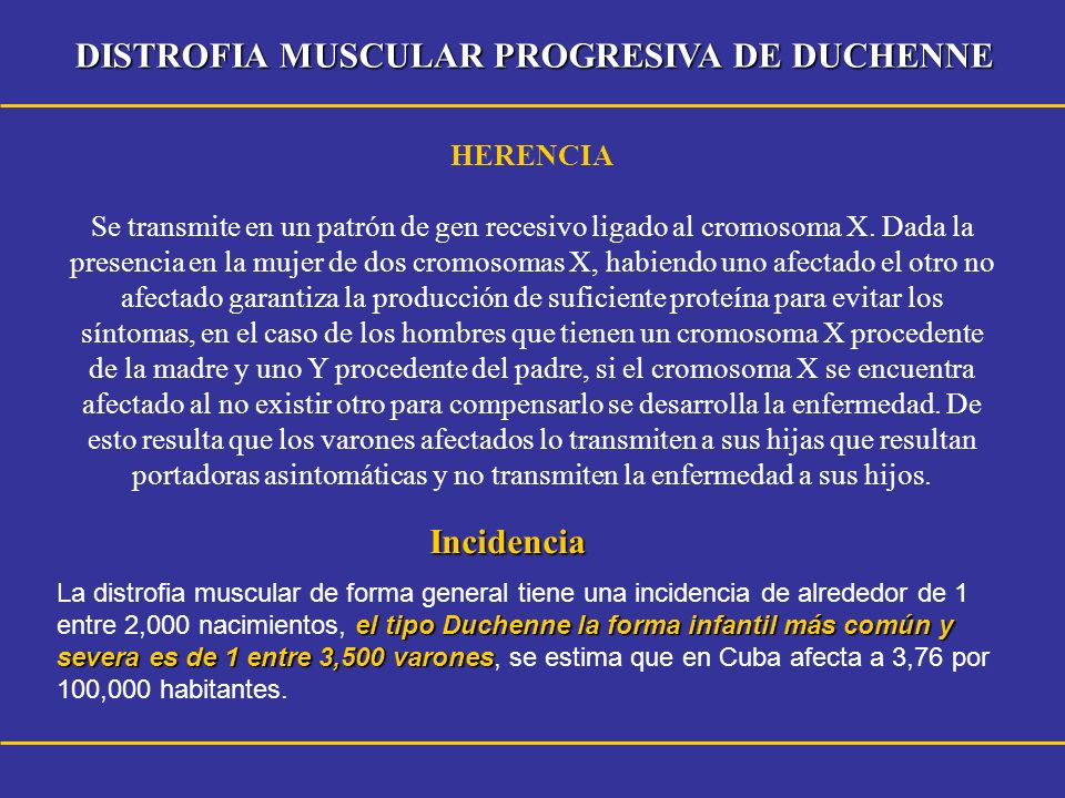 DISTROFIA MUSCULAR PROGRESIVA DE DUCHENNE Incidencia el tipo Duchenne la forma infantil más común y severa es de 1 entre 3,500 varones La distrofia mu