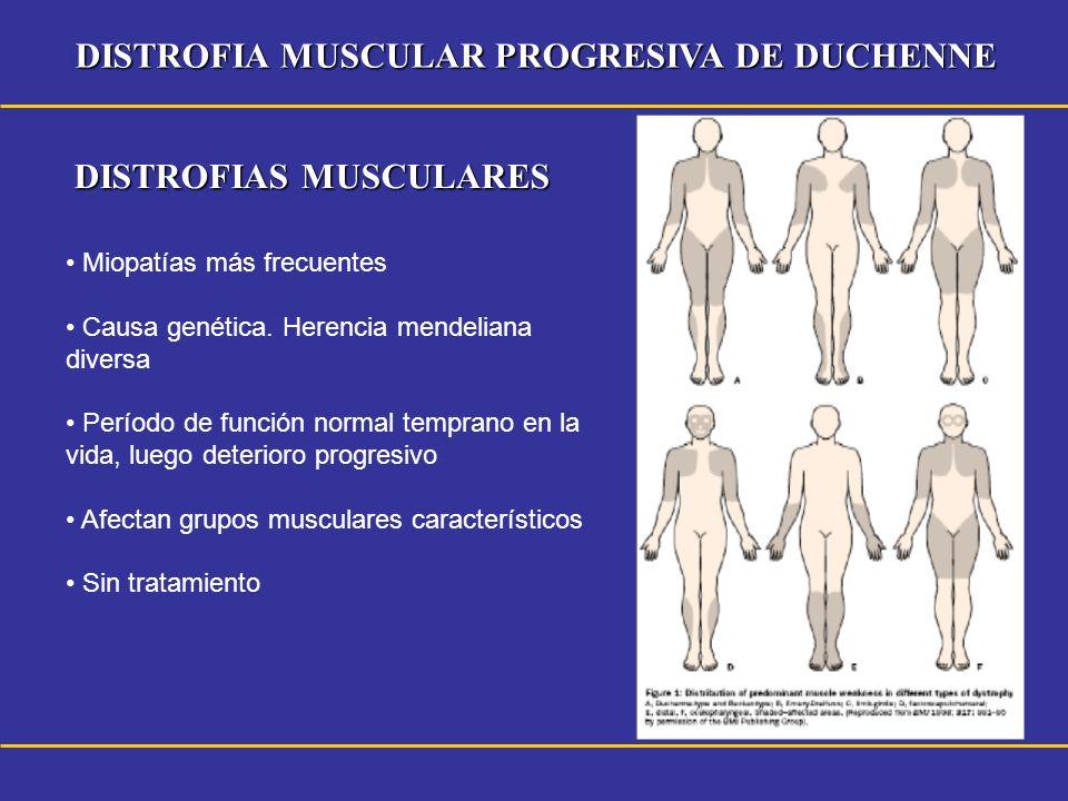 DISTROFIA MUSCULAR PROGRESIVA DE DUCHENNE DISTROFIAS MUSCULARES Miopatías más frecuentes Causa genética. Herencia mendeliana diversa Período de funció