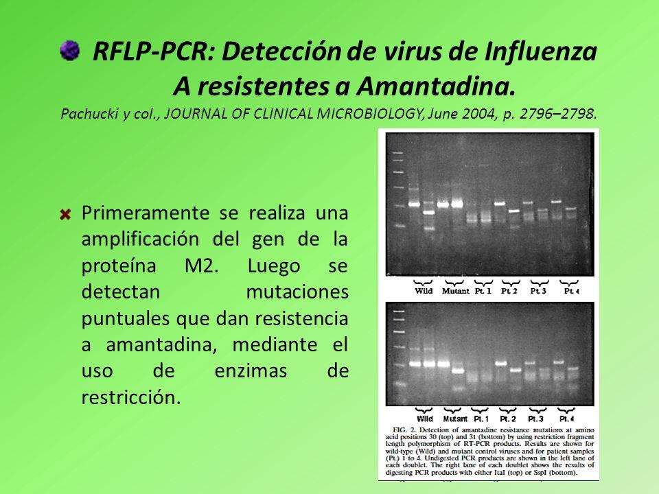 RFLP-PCR: Detección de virus de Influenza A resistentes a Amantadina. Pachucki y col., JOURNAL OF CLINICAL MICROBIOLOGY, June 2004, p. 2796–2798. Prim