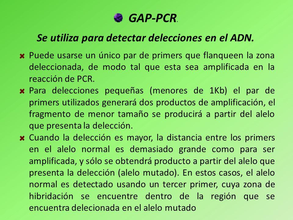 GAP-PCR. Puede usarse un único par de primers que flanqueen la zona deleccionada, de modo tal que esta sea amplificada en la reacción de PCR. Para del