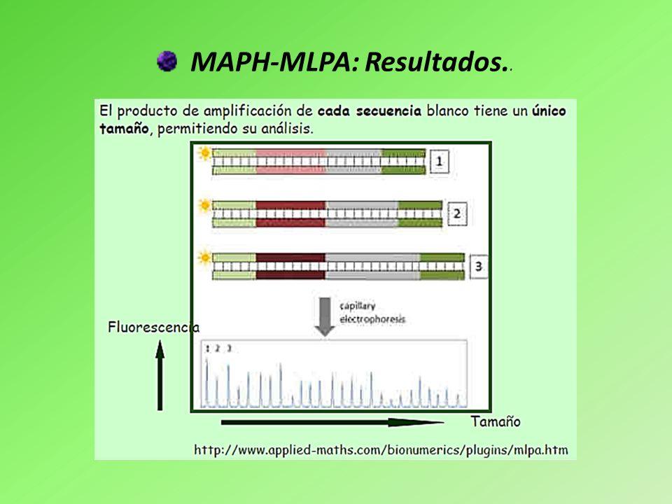 MAPH-MLPA: Resultados..