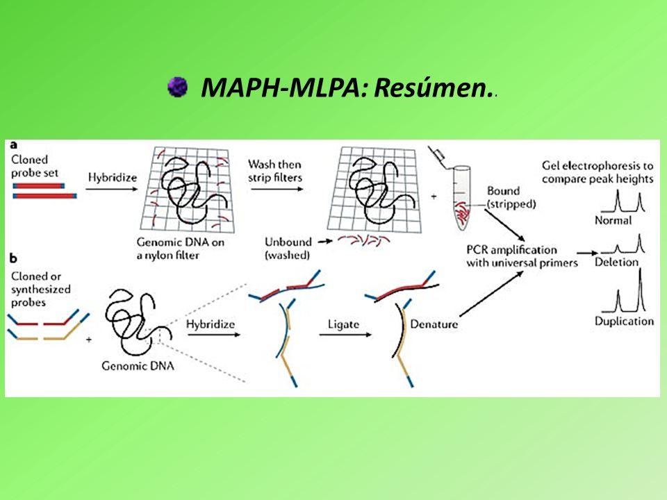 MAPH-MLPA: Resúmen..