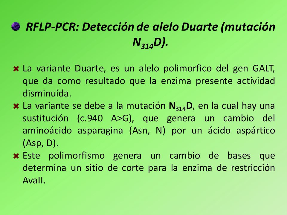 RFLP-PCR: Detección de alelo Duarte (mutación N 314 D). La variante Duarte, es un alelo polimorfico del gen GALT, que da como resultado que la enzima