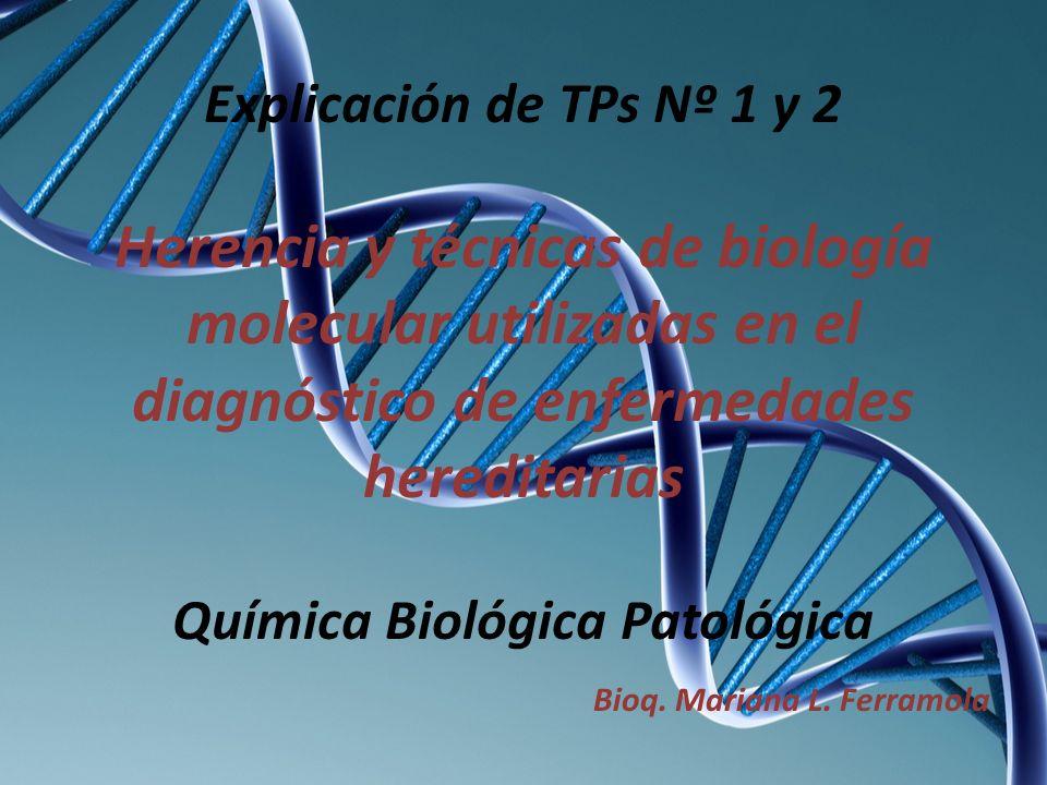 Explicación de TPs Nº 1 y 2 Herencia y técnicas de biología molecular utilizadas en el diagnóstico de enfermedades hereditarias Química Biológica Pato