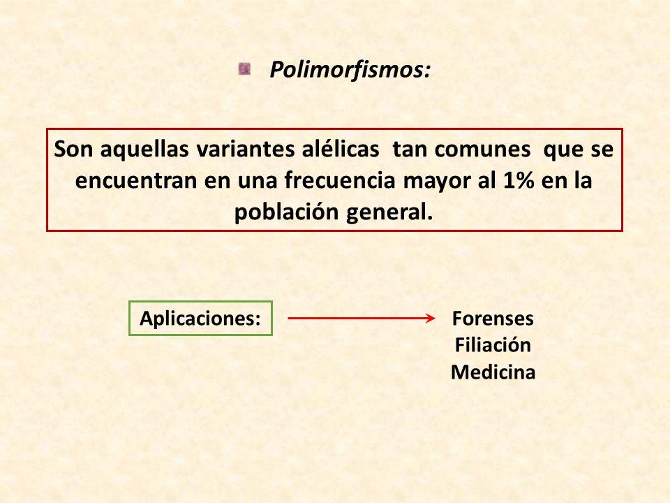Polimorfismos: Son aquellas variantes alélicas tan comunes que se encuentran en una frecuencia mayor al 1% en la población general. Aplicaciones: Fore