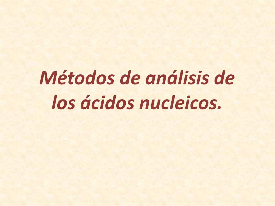 Métodos de análisis de los ácidos nucleicos.