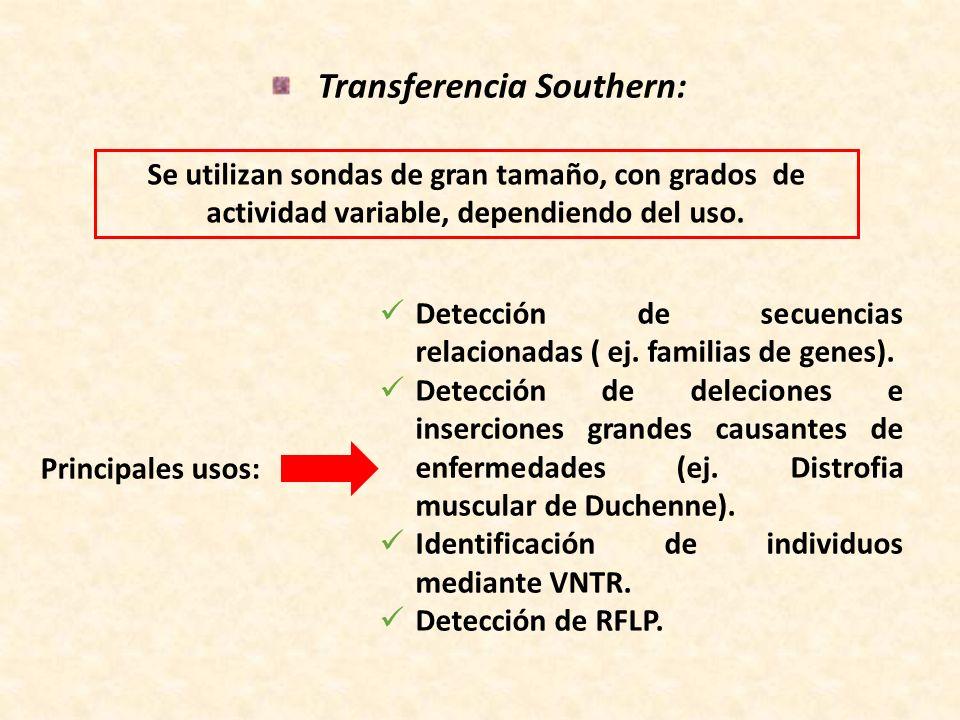Principales usos: Detección de secuencias relacionadas ( ej. familias de genes). Detección de deleciones e inserciones grandes causantes de enfermedad