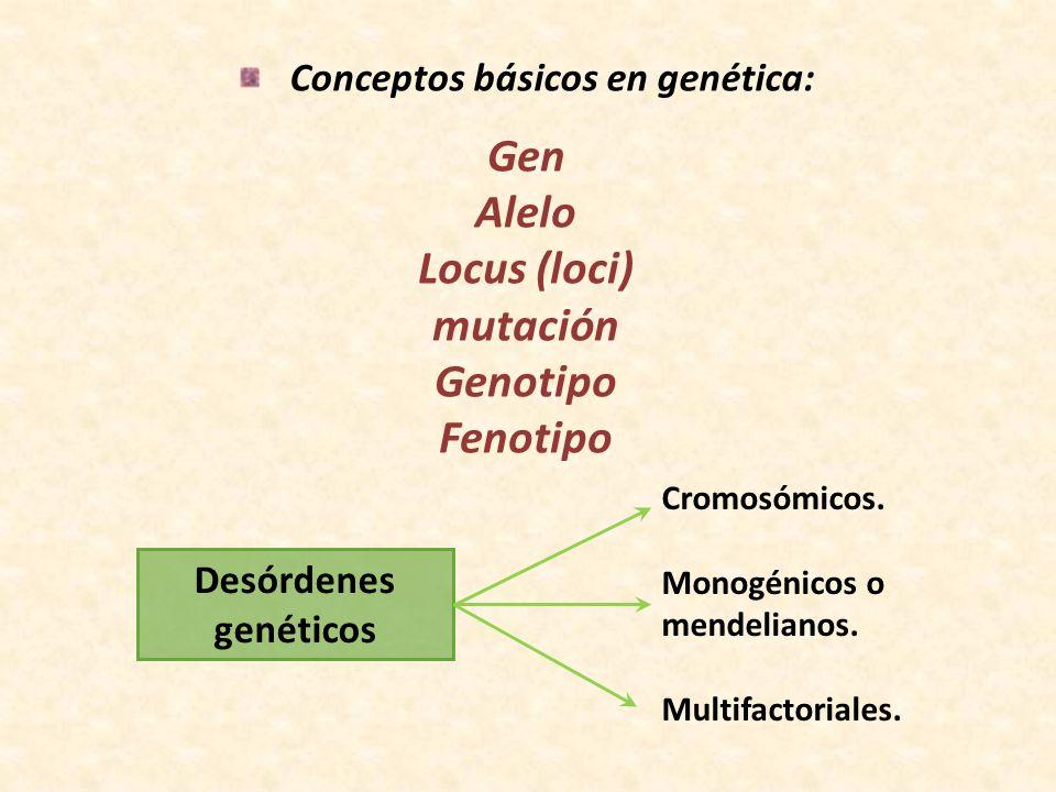 Conceptos básicos en genética: Gen Alelo Locus (loci) mutación Genotipo Fenotipo Desórdenes genéticos Cromosómicos. Monogénicos o mendelianos. Multifa