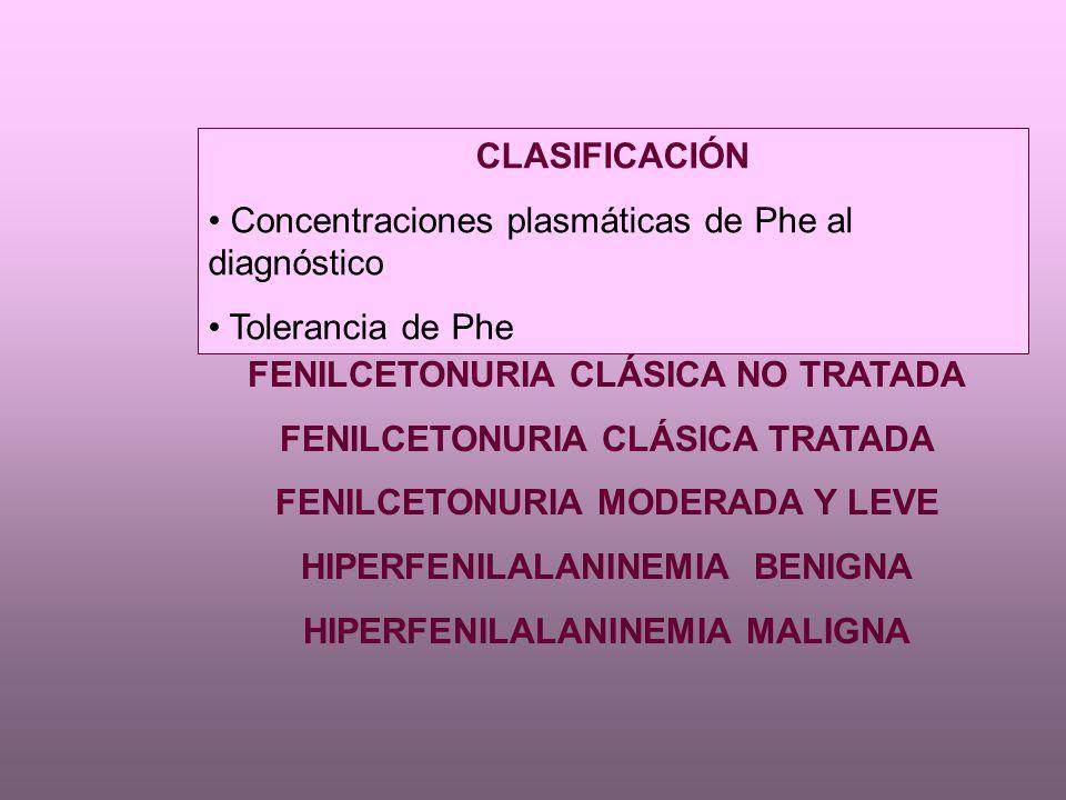 CLASIFICACIÓN Concentraciones plasmáticas de Phe al diagnóstico Tolerancia de Phe FENILCETONURIA CLÁSICA NO TRATADA FENILCETONURIA CLÁSICA TRATADA FENILCETONURIA MODERADA Y LEVE HIPERFENILALANINEMIA BENIGNA HIPERFENILALANINEMIA MALIGNA