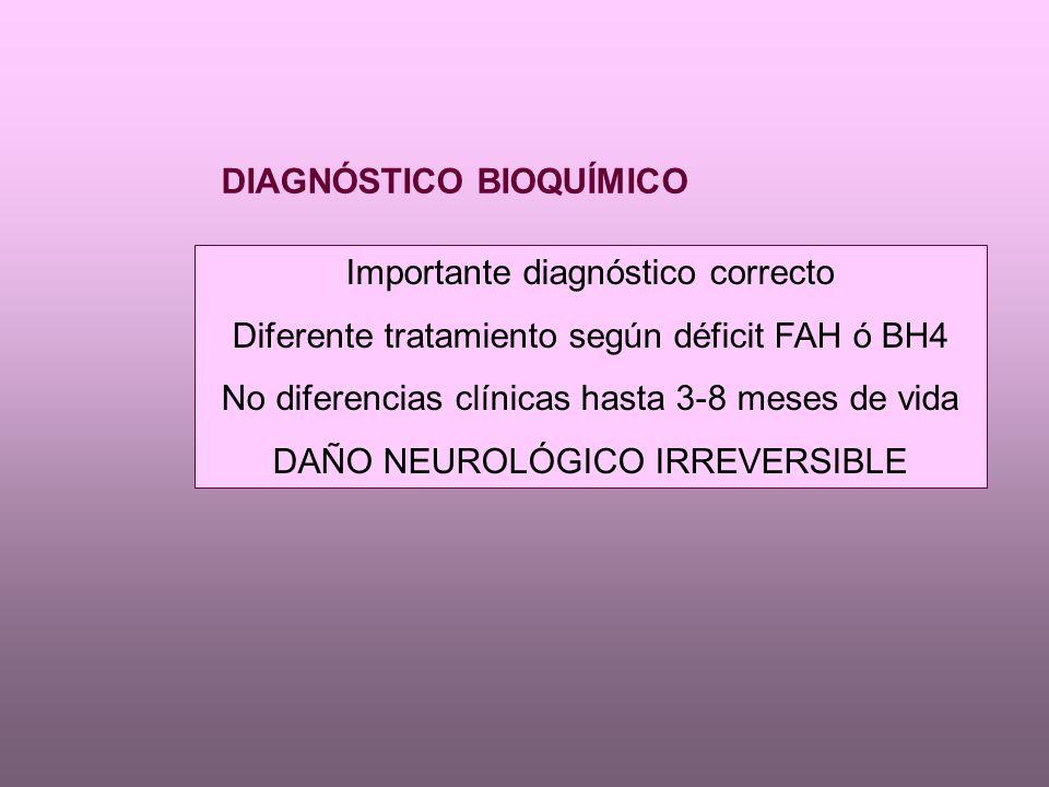 DIAGNÓSTICO BIOQUÍMICO Importante diagnóstico correcto Diferente tratamiento según déficit FAH ó BH4 No diferencias clínicas hasta 3-8 meses de vida DAÑO NEUROLÓGICO IRREVERSIBLE