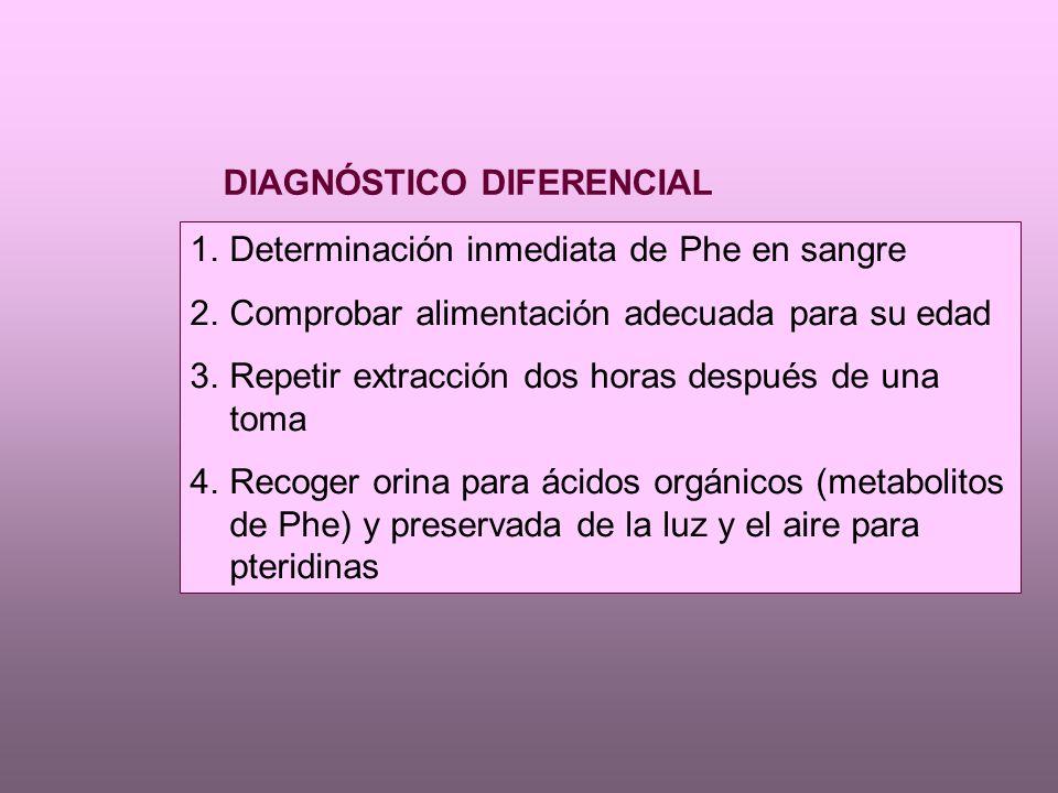 1.Determinación inmediata de Phe en sangre 2.Comprobar alimentación adecuada para su edad 3.Repetir extracción dos horas después de una toma 4.Recoger orina para ácidos orgánicos (metabolitos de Phe) y preservada de la luz y el aire para pteridinas DIAGNÓSTICO DIFERENCIAL