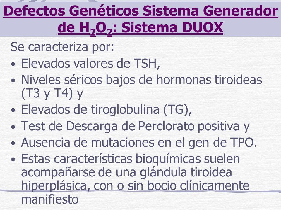Se caracteriza por: Elevados valores de TSH, Niveles séricos bajos de hormonas tiroideas (T3 y T4) y Elevados de tiroglobulina (TG), Test de Descarga