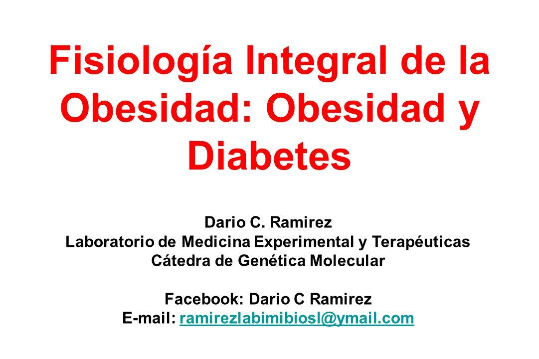 Fisiología Integral de la Obesidad: Obesidad y Diabetes Dario C. Ramirez Laboratorio de Medicina Experimental y Terapéuticas Cátedra de Genética Molec