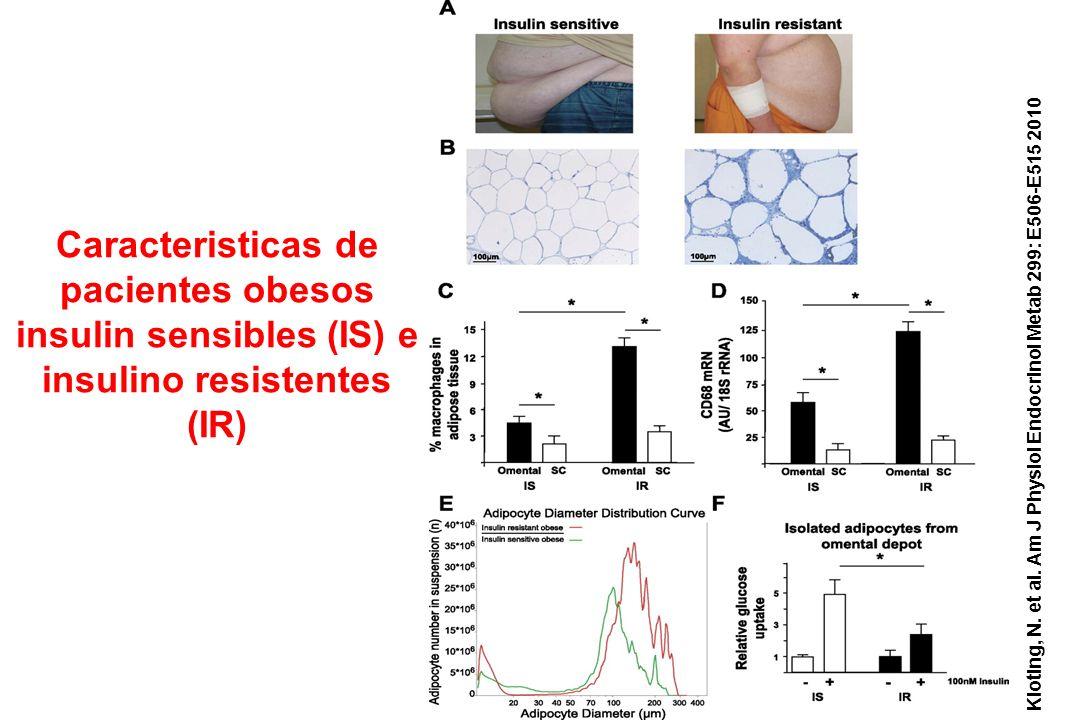 Kloting, N. et al. Am J Physiol Endocrinol Metab 299: E506-E515 2010 Caracteristicas de pacientes obesos insulin sensibles (IS) e insulino resistentes