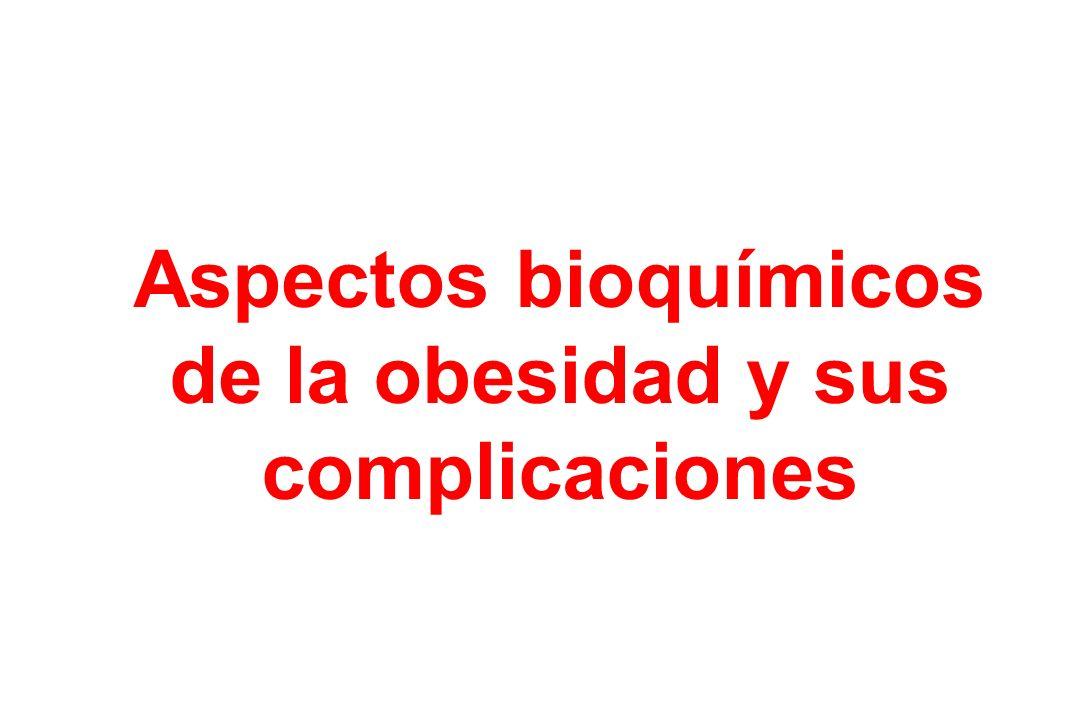 Aspectos bioquímicos de la obesidad y sus complicaciones