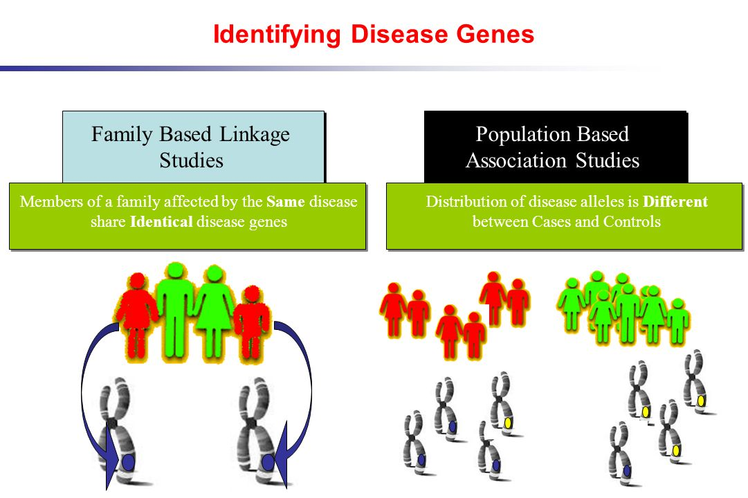 Identifying Disease Genes Family Based Linkage Studies Population Based Association Studies Members of a family affected by the Same disease share Ide