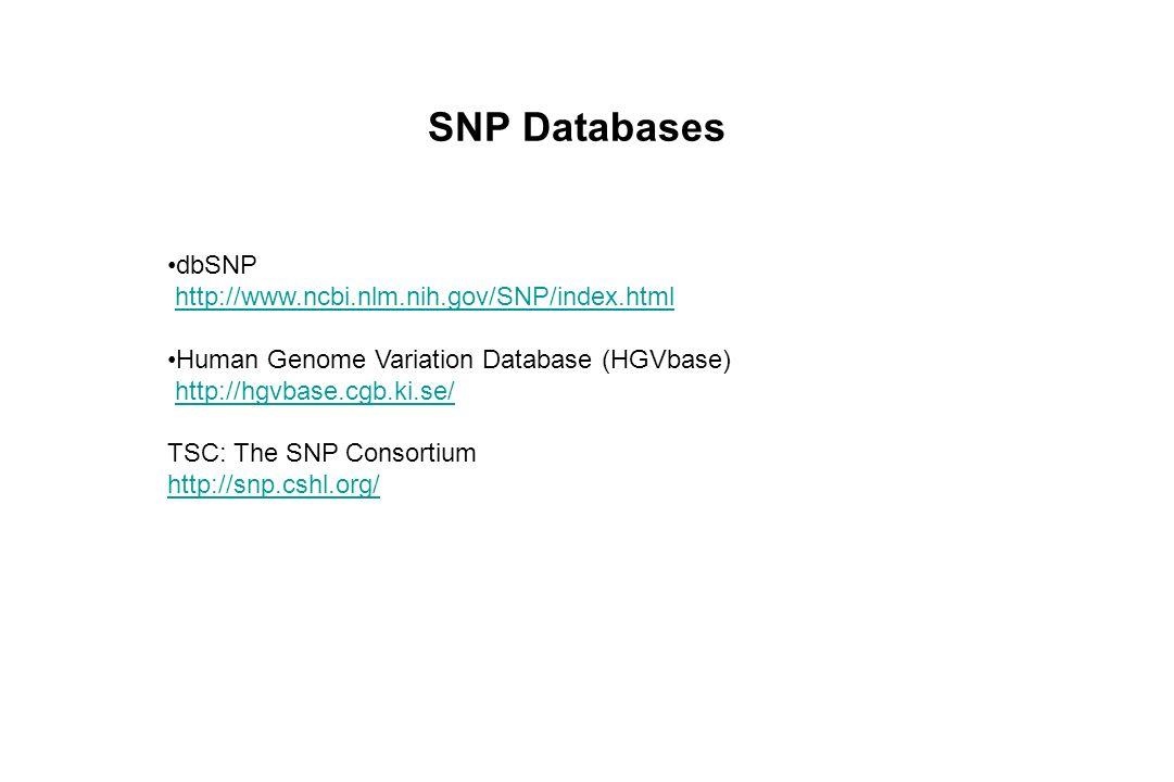 SNP Databases dbSNP http://www.ncbi.nlm.nih.gov/SNP/index.html Human Genome Variation Database (HGVbase) http://hgvbase.cgb.ki.se/ TSC: The SNP Consor