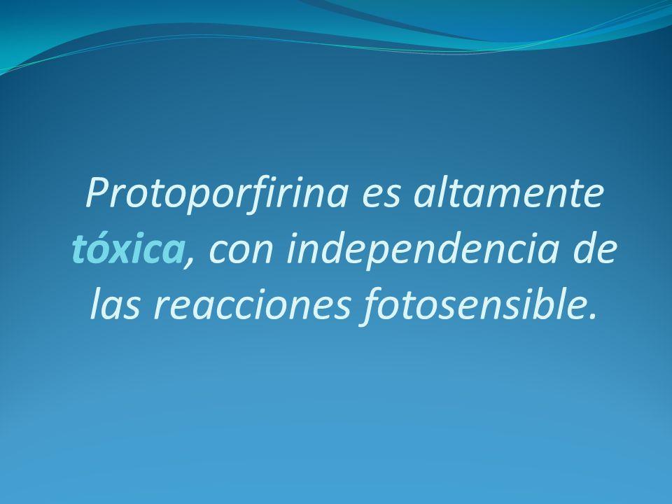 Protoporfirina es altamente tóxica, con independencia de las reacciones fotosensible.