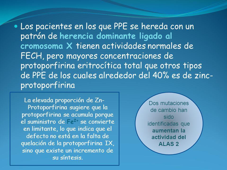 Los pacientes en los que PPE se hereda con un patrón de herencia dominante ligado al cromosoma X tienen actividades normales de FECH, pero mayores con