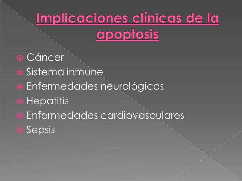 Cáncer Sistema inmune Enfermedades neurológicas Hepatitis Enfermedades cardiovasculares Sepsis