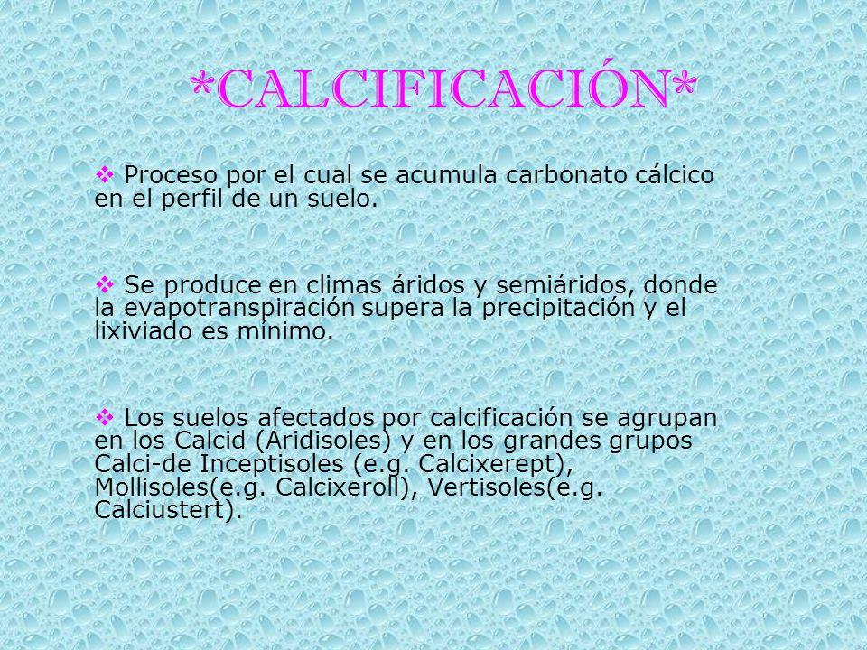 *CALCIFICACIÓN* Proceso por el cual se acumula carbonato cálcico en el perfil de un suelo. Se produce en climas áridos y semiáridos, donde la evapotra