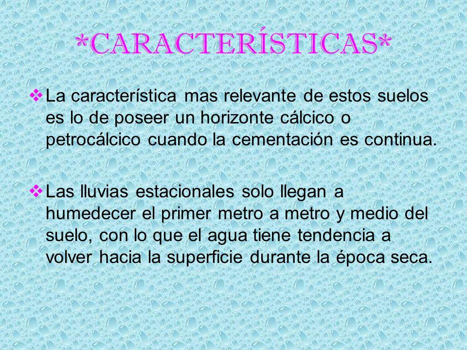 *CARACTERÍSTICAS* La característica mas relevante de estos suelos es lo de poseer un horizonte cálcico o petrocálcico cuando la cementación es continu