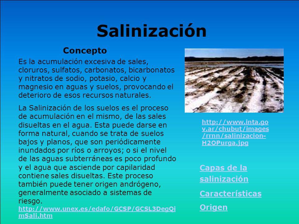 Es la acumulación excesiva de sales, cloruros, sulfatos, carbonatos, bicarbonatos y nitratos de sodio, potasio, calcio y magnesio en aguas y suelos, p