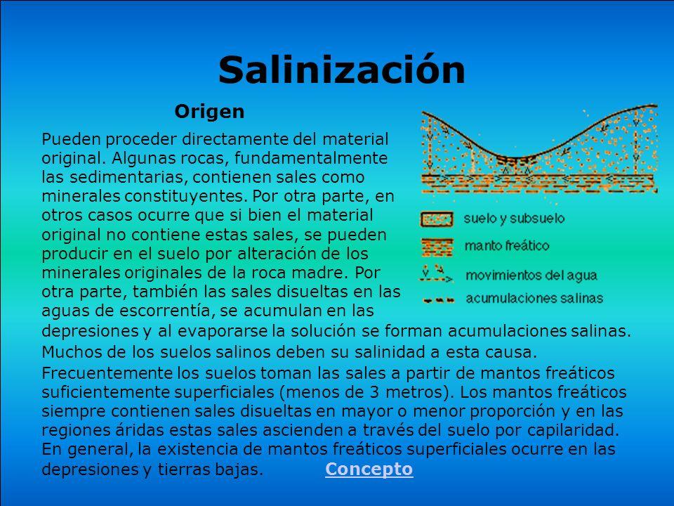 Origen Pueden proceder directamente del material original. Algunas rocas, fundamentalmente las sedimentarias, contienen sales como minerales constituy