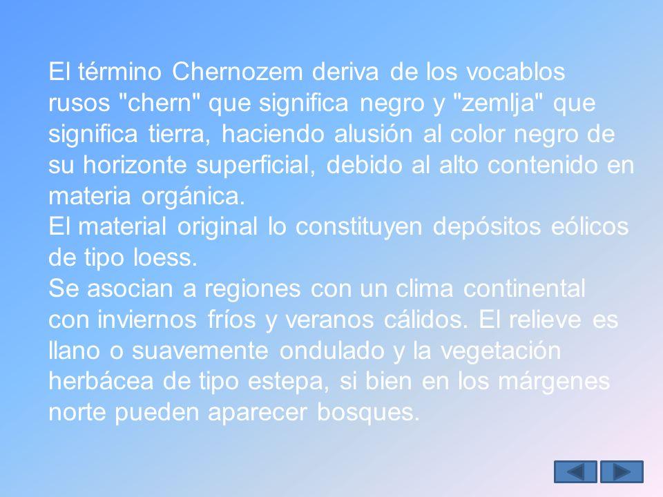 El término Chernozem deriva de los vocablos rusos chern que significa negro y zemlja que significa tierra, haciendo alusión al color negro de su horizonte superficial, debido al alto contenido en materia orgánica.
