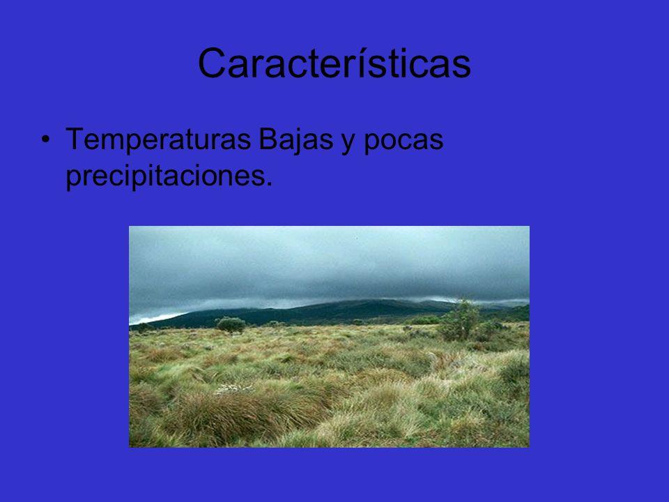 Características Temperaturas Bajas y pocas precipitaciones.