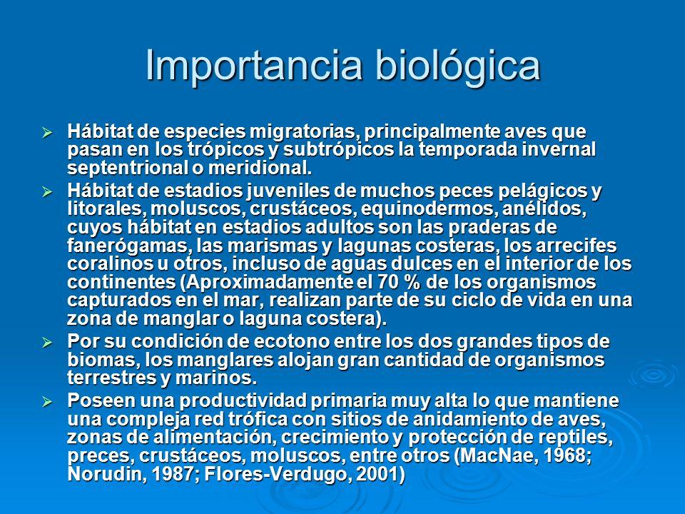 Importancia biológica Hábitat de especies migratorias, principalmente aves que pasan en los trópicos y subtrópicos la temporada invernal septentrional