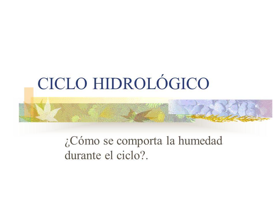 CICLO HIDROLÓGICO ¿Cómo se comporta la humedad durante el ciclo?.