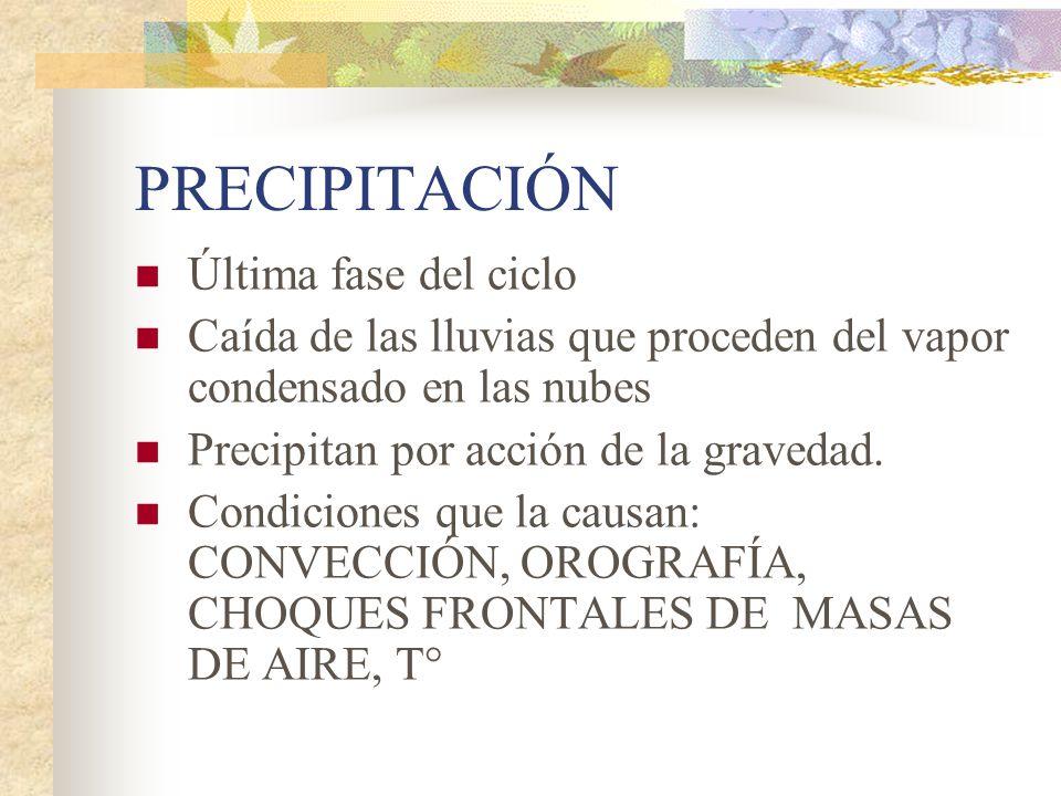 PRECIPITACIÓN Última fase del ciclo Caída de las lluvias que proceden del vapor condensado en las nubes Precipitan por acción de la gravedad. Condicio