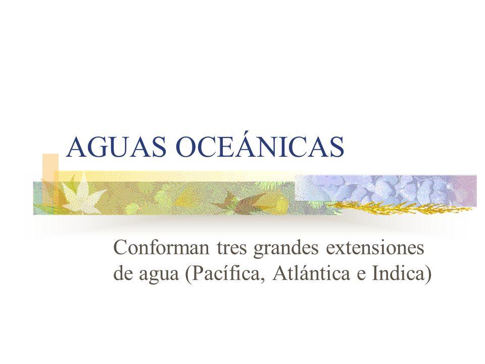AGUAS OCEÁNICAS Conforman tres grandes extensiones de agua (Pacífica, Atlántica e Indica)