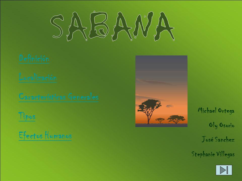 Una sabana es una formación herbácea característica de las regiones tropicales con prolongada estación seca, en la que pueden aparecer algunos árboles aislados.